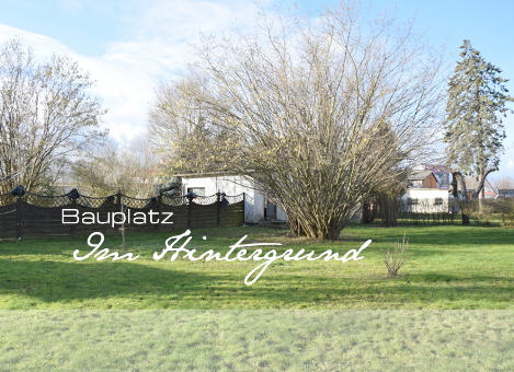 Immobilienmakler bei Rostock WIEDEMEYER IMMOBILIEN